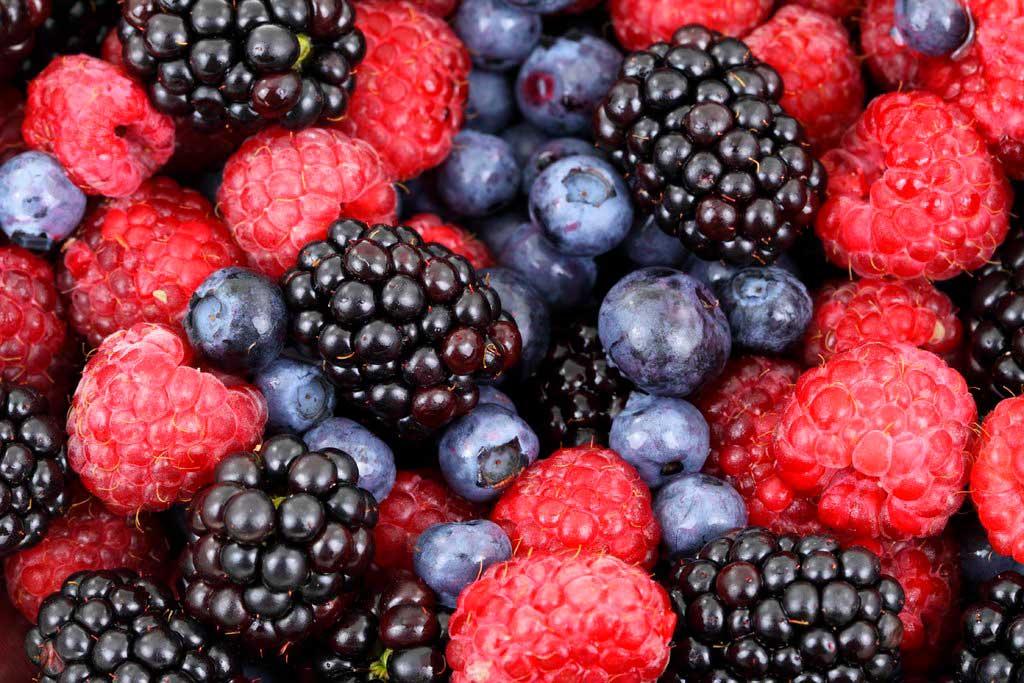 Ethylene scavengers to extend the shelf life of fresh fruit